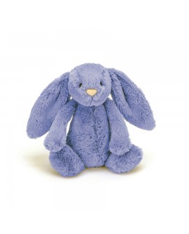lapin bleu petit bashful