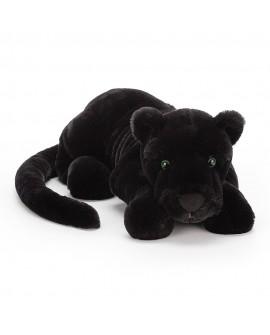 Paris panthere noire