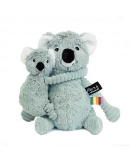 Trankilou koala menthe